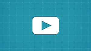 Вебинары и онлайн-консультации